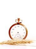 Banatka przed rocznik kieszeni zegarem tła pojęcia odosobniony przedmiota czas biel Zdjęcia Stock