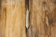Banatki lub żyta spikelets na drewnianym tle zamykają w górę obraz royalty free
