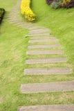 Banaträimplantat i gräs Fotografering för Bildbyråer