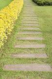 Banaträimplantat i gräs Royaltyfria Bilder