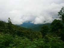 Banaue stock foto's
