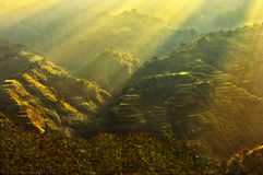 Banaue Photos stock