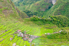 Banaue Fotos de Stock Royalty Free