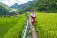 Ifugao ethnic minority in the Philippines. BANAUE, PHILIPPINES - MAY 02 : Woman from Ifugao Minority near a rice terraces in Banaue the Philippines on May 02 Stock Photography