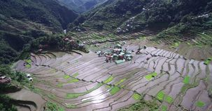 Banaue Rice Terraces in mountains of Ifugao in the Philippines.