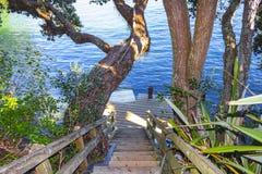 Banaväg till den hemliga lilla viken, Stanley Point, Devonport, Auckland Nya Zeeland Royaltyfri Bild