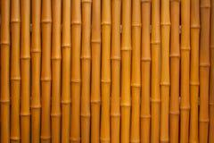 Banboo artificiale Fotografie Stock Libere da Diritti