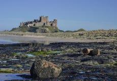 Banburgh slott - sikt från norrsidan Royaltyfri Fotografi