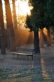 Banc au coucher du soleil Photos libres de droits