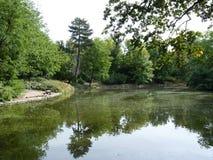Banc au-dessus d'étang en parc Photo libre de droits