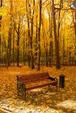 Banc avec des feuilles en Autumn Park In Sunny Day photographie stock