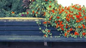 banc avec des fleurs image stock