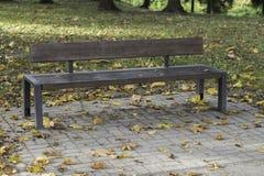 Banc avec les feuilles de chute et le backround d'automne - image courante Images libres de droits