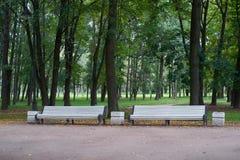 Banc blanc en parc de victoire petersburg images stock