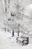 banc couvert de neige en parc de ville photos libres de droits