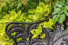Banc décoratif de jardin image stock