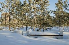 Banc dans la neige Images stock