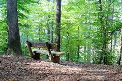 Banc dans les bois Photo libre de droits