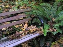 Banc de forêt image libre de droits