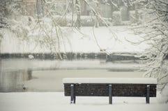 Banc de l'hiver Photo libre de droits