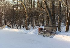 Banc de parc en parc d'hiver photos stock