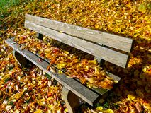 Banc de parc fait de conseils simples pleins des feuilles d'automne photo stock