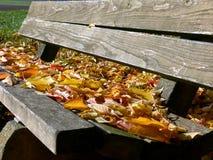 Banc de parc fait de conseils simples pleins des feuilles d'automne 2 photographie stock