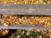 Banc de parc fait de conseils simples pleins des feuilles d'automne 3 photographie stock