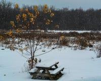 Banc de pique-nique couvert dans la neige Photographie stock libre de droits