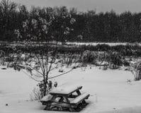 Banc de pique-nique couvert dans la neige Photo libre de droits