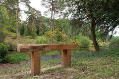 Banc de région boisée dans le Sussex rural l'angleterre image stock