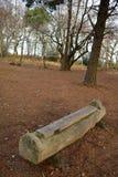 Banc de rondin en bois Images libres de droits