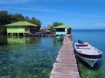 Banc de sable de rampement dans le del Toro de Bocas Image libre de droits