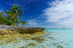 Banc de sable de tortue verte, Bahamas Images stock