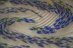 Banc des poissons de couleur bleue, jaune et violette contre les vagues blanches image libre de droits