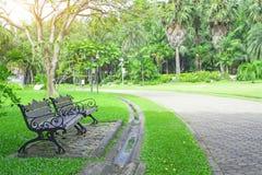 Banc deux en bois sur l'arrière-cour verte fraîche d'herbe de tapis, pelouse lisse près de passage couvert gris de trottoir de bl photographie stock