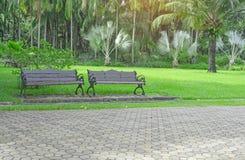 Banc deux en bois sur la cour verte fraîche d'herbe de tapis, pelouse lisse près de passage couvert gris de trottoir de bloc de b images libres de droits