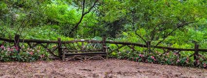 Banc en bois d'amour dans le Central Park - Manhattan, NY Photos stock