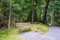 Banc en bois dans la forêt Photographie stock libre de droits