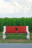 Banc en bois dans le domaine de maïs Photo libre de droits