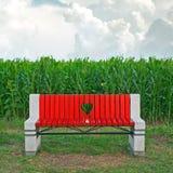 Banc en bois dans le domaine de maïs Photographie stock
