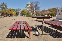 Banc en bois près de château de Kyoto Photo stock
