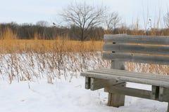 Banc en bois sur un journal de l'hiver Images libres de droits