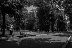 Banc en parc Image stock