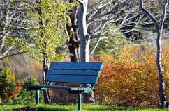Banc en parc Images libres de droits