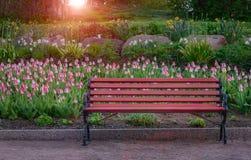 banc en parc au coucher du soleil Photos stock