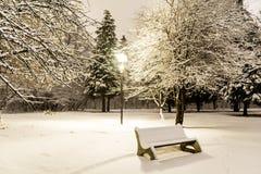 Banc en parc d'hiver par nuit Photographie stock