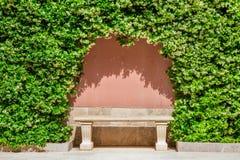 Banc en pierre sous les plantes vertes en parc image stock