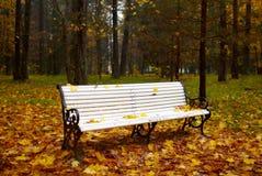 Banc en stationnement d'automne. images libres de droits