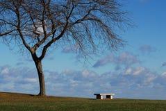 Banc et arbre Photos stock
